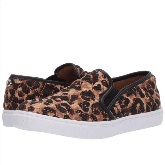 Steve Madden Shoes | Ecentrcq Leopard
